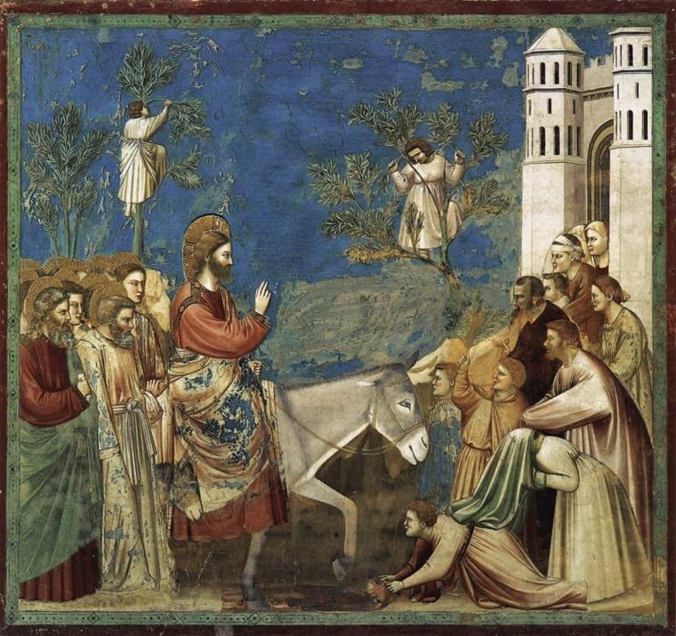 Giotto, Domenica delle Palme