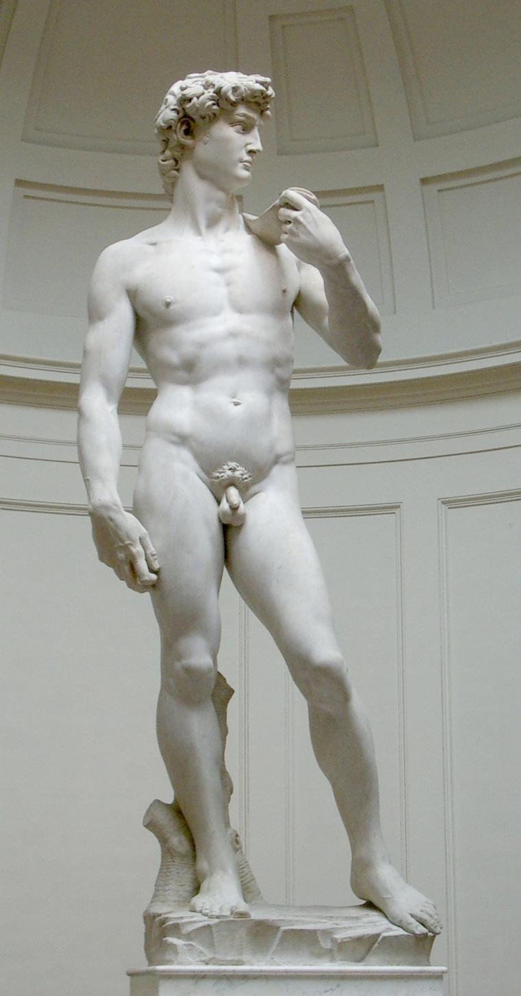 Michelangelo Bonarroti, David